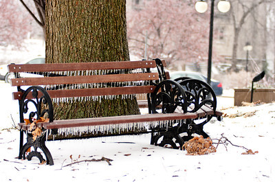 "Bench at City Hall during ""Snowmageddon"" featured on University City Patch website: http://universitycity.patch.com/articles/ice-coats-university-city#photo-4707289"