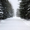 Snowy logging road in Michigan