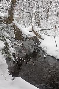 Blair Brook, Cambridge Massachusetts