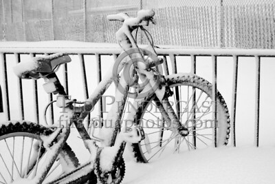 Abandoned Bike, Belmont High School -- Images shot in and around Belmont Massachusetts during a snowstorm that occurred on Sunday, December 21, 2008