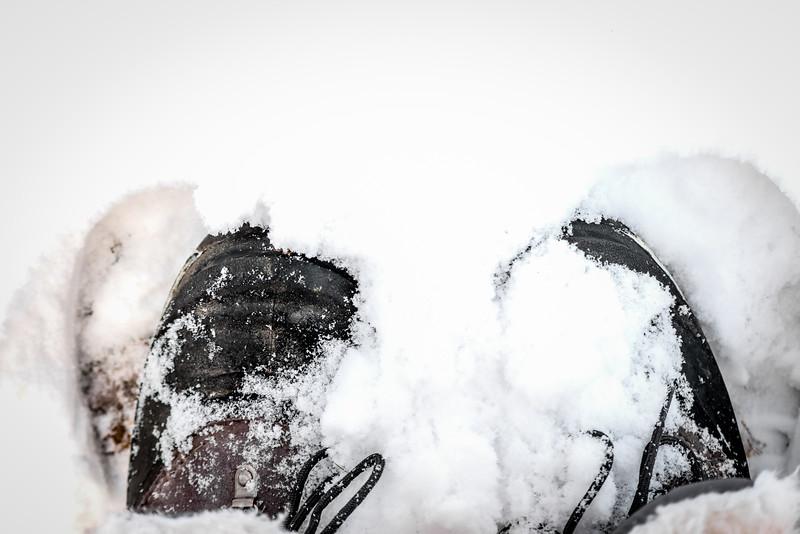 snowy november-004