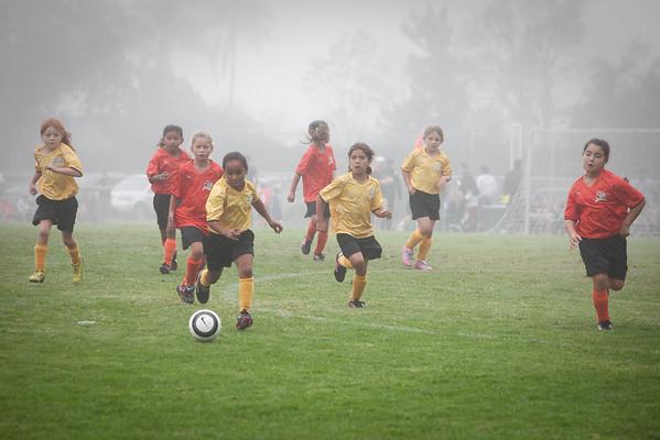 Soccer - Bumblebee