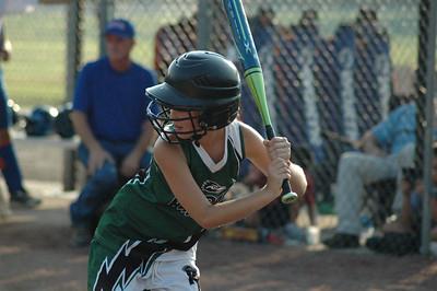 softball 09 state tourney