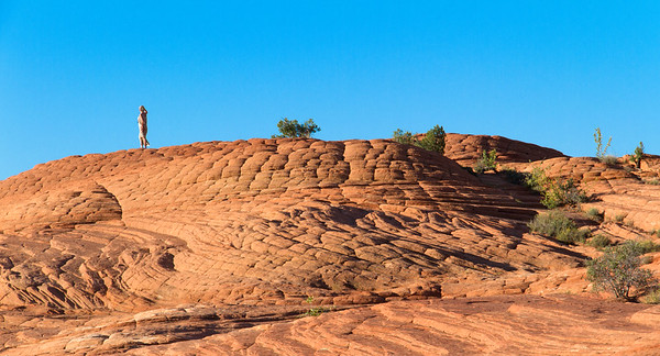 Snow Canyon State Park, near St. George, UT.  October 3, 2013.