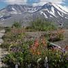 Mt. Saint Helen's