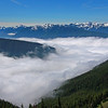 Hurricane Ridge  Mt. Olympic National Park