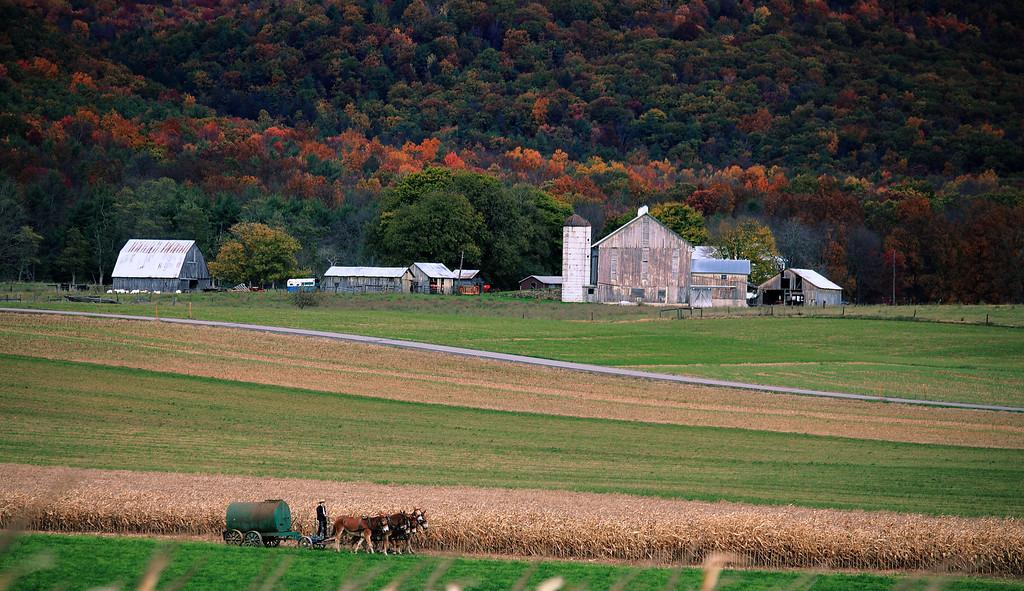 October field work, Rebersburg, PA