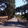 Cycling near Santa Rosa