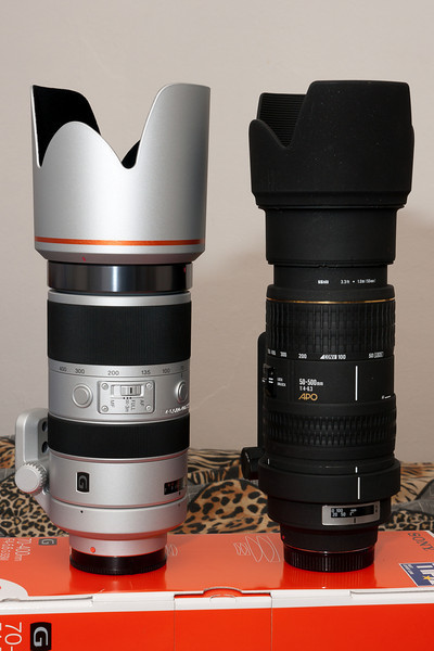 The 70-400 G in comparison to the Sigma 50-500 when both are at the same minimum focal length (70mm).