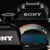 50 Sony A7R II Sony G 90mm Macro 2 8 #SonyAlpha RobertEvans com  DSC06522