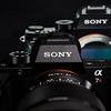 52 Sony A7R II Sony G 90mm Macro 2 8 #SonyAlpha RobertEvans com  DSC06527