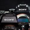 47 Sony A7R II Sony G 90mm Macro 2 8 #SonyAlpha RobertEvans com  DSC06515