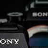 49 Sony A7R II Sony G 90mm Macro 2 8 #SonyAlpha RobertEvans com  DSC06519