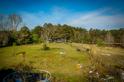 Blue Cottage wide open zoom