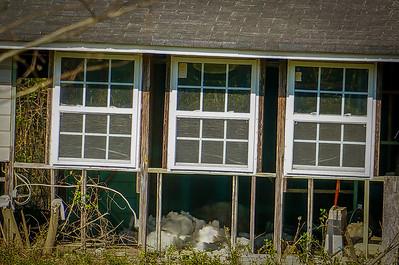 Blue Cottage Smart Zoom plus CIZ = 600mm