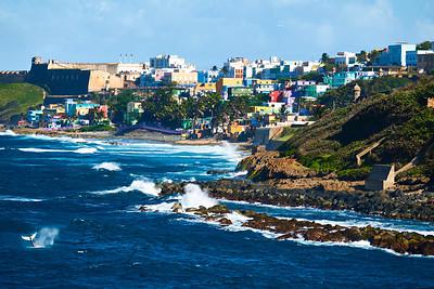 RobertEvans com  |  Puerto Rico