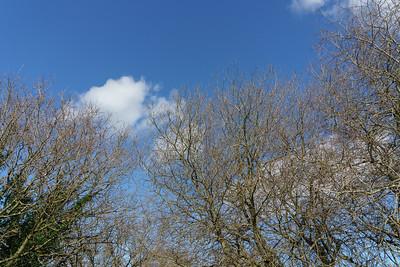 Moors Park