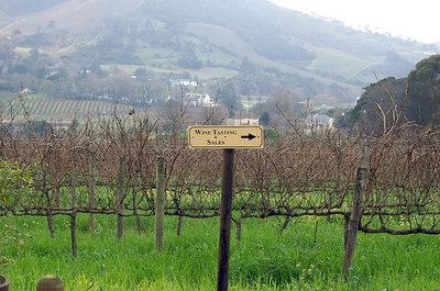 last vineyard visited