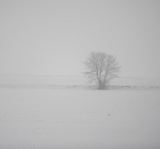 Snow storm near Oxford, England.