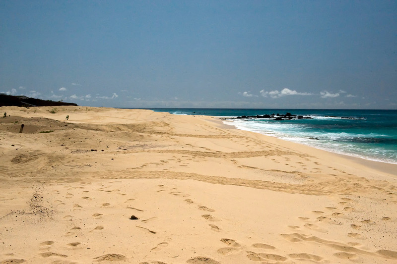 The three horizontal marks are tracks of nesting turtles, Ascension Island.