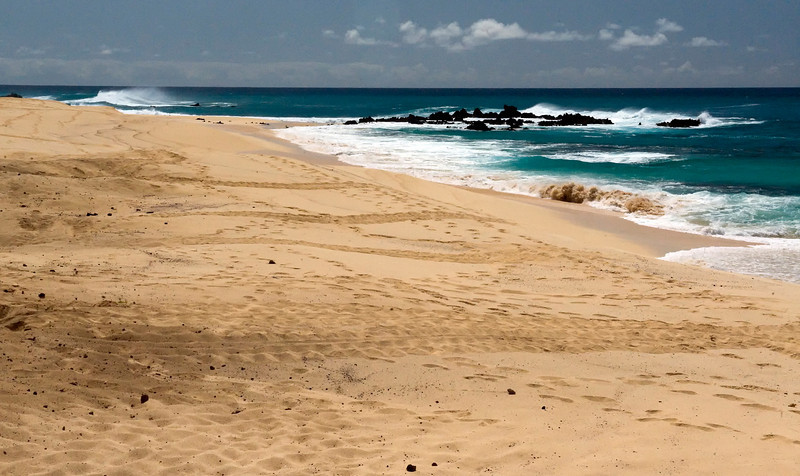 The horizontal marks are tracks of nesting turtles, Ascension Island.