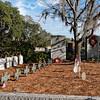 Hunley Crew Burial at Magnolia Cemetery