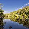 Edisto River in South Carolina