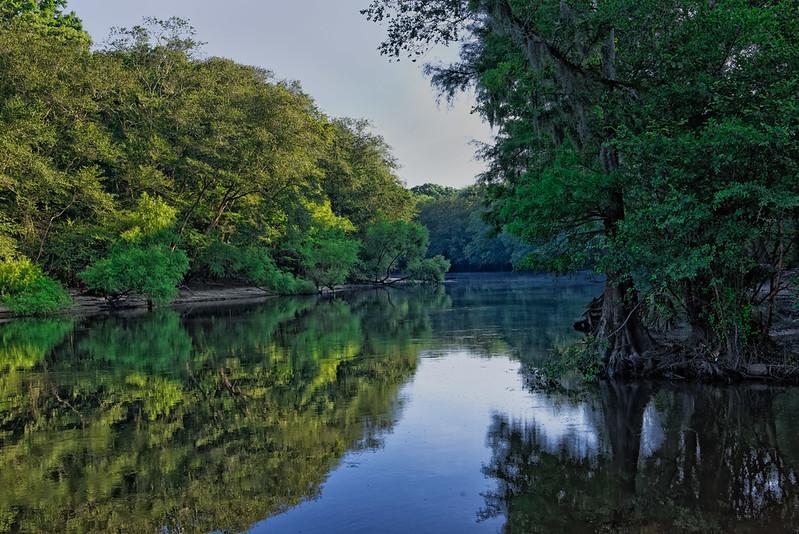 Edisto River in Adams Run