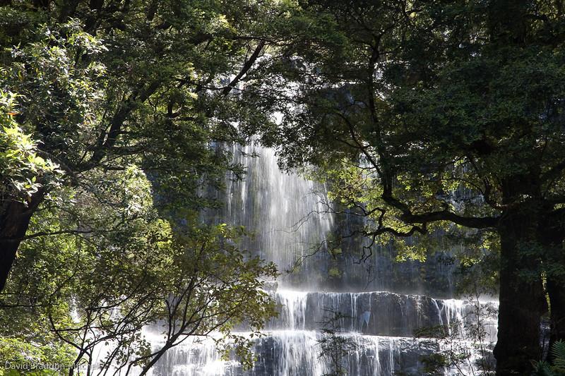 Rusell Falls, Mt field Nat Park