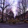 Union Park Street. January, 2014.