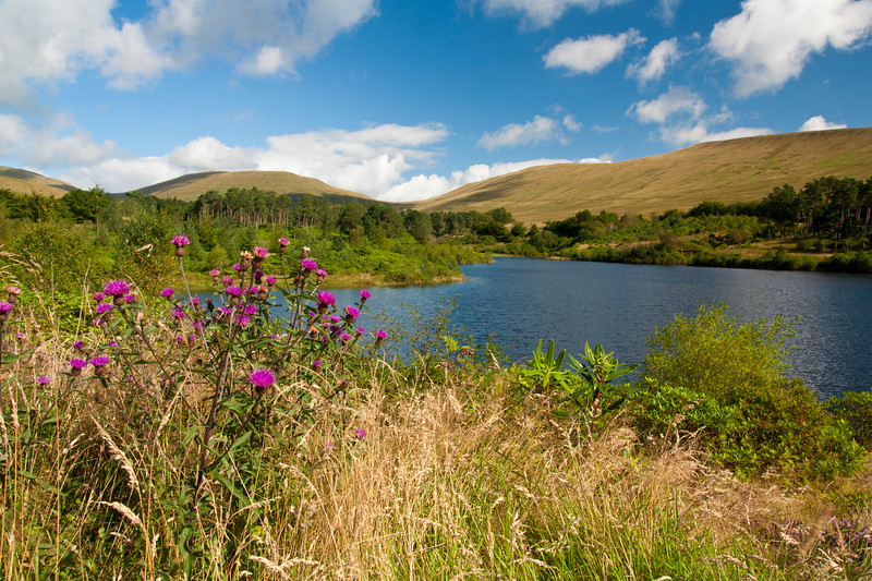 View of the Brecon Beacons from the Neudd reservoir