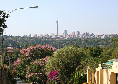 view of downtown johannesburg from the neighborhood