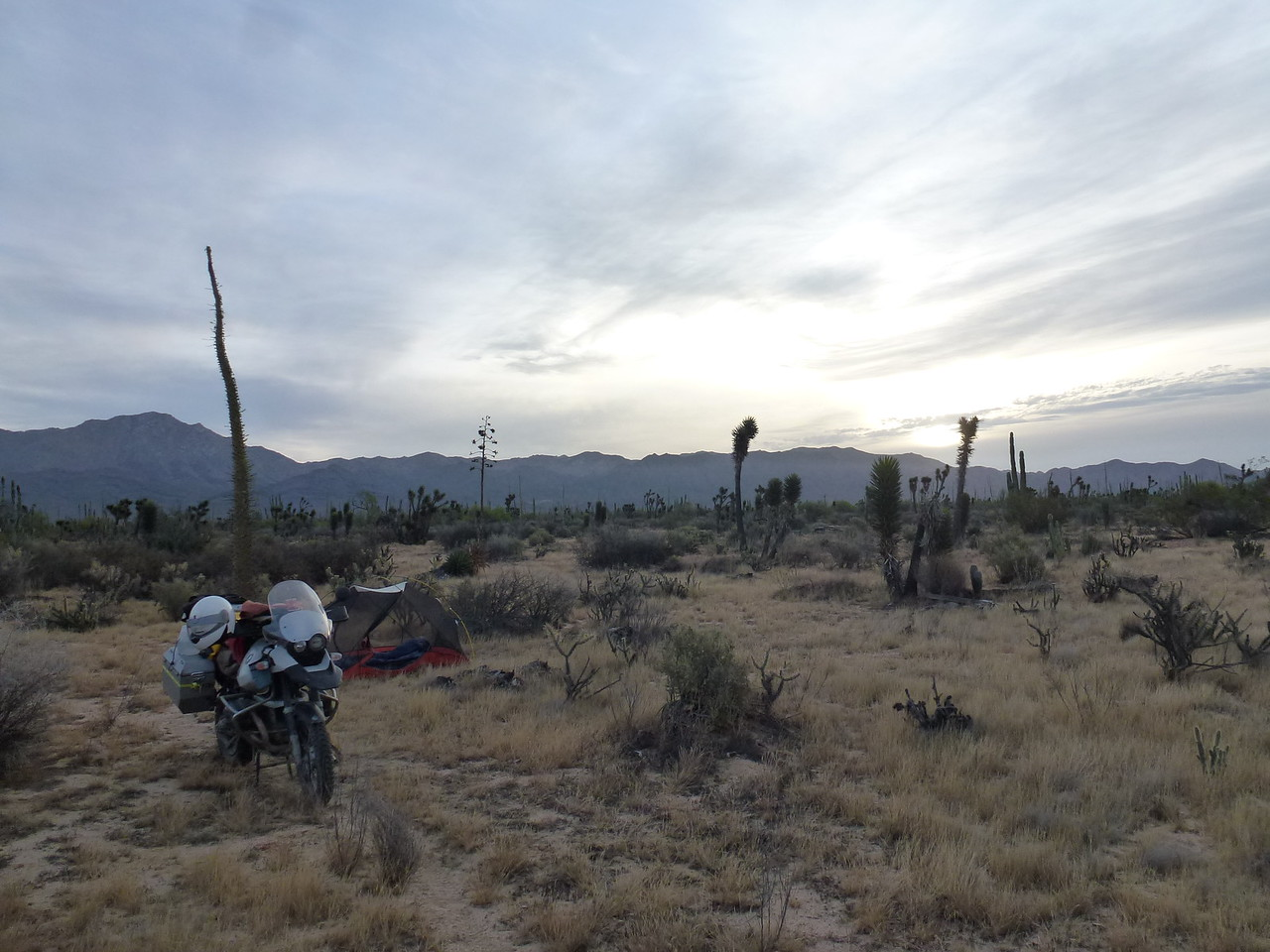 Camped at the Calamajue Wash <br /> <br /> This was the next morning , as it was dark when I pitched my tent