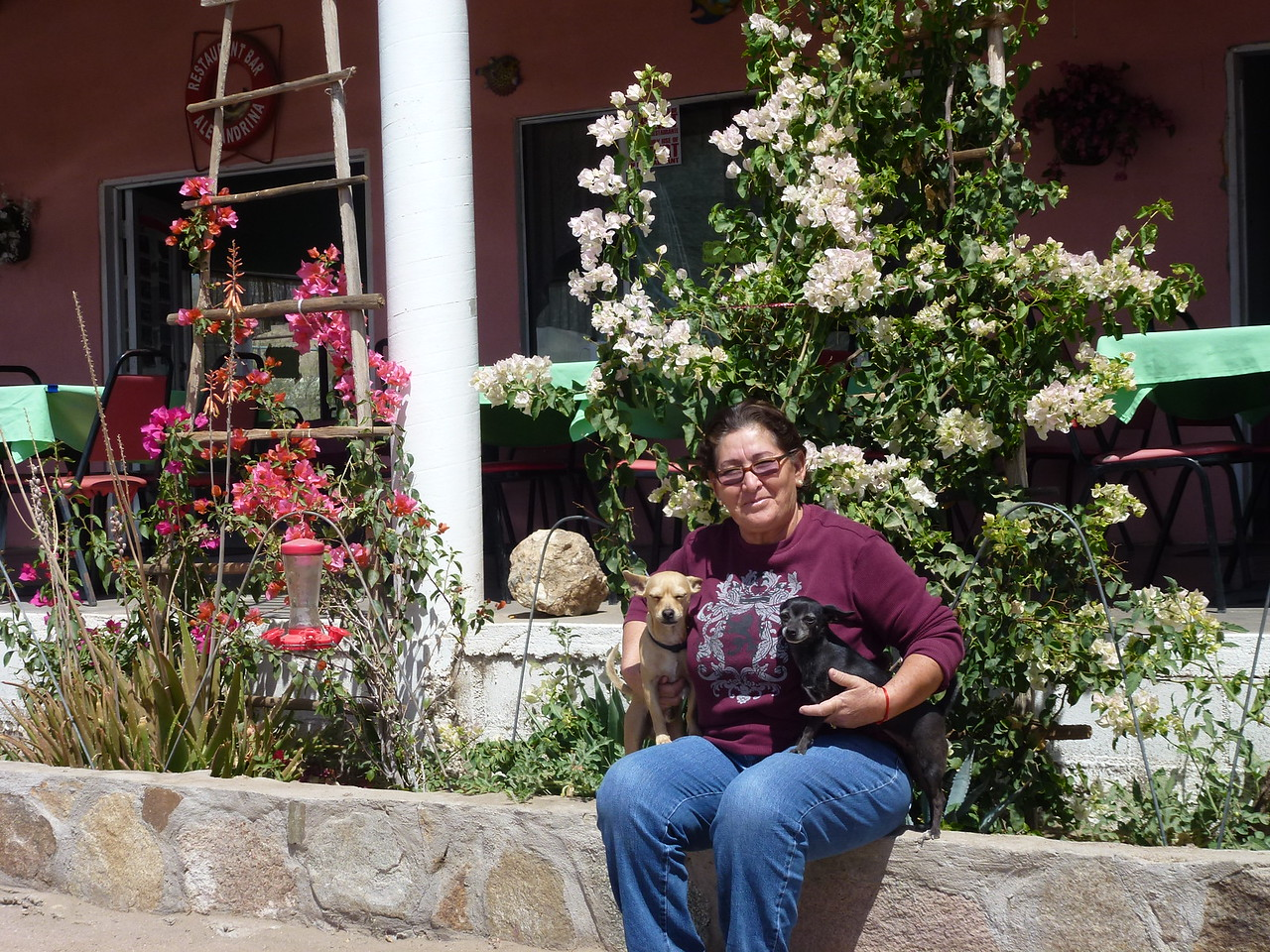 This is Alejandrina , herself .<br /> <br /> She sat with me on the porch and talked , while I had breakfast (desayuno ) <br /> <br /> She speaks fairly good English , and when I was thru I asked her for this photo .
