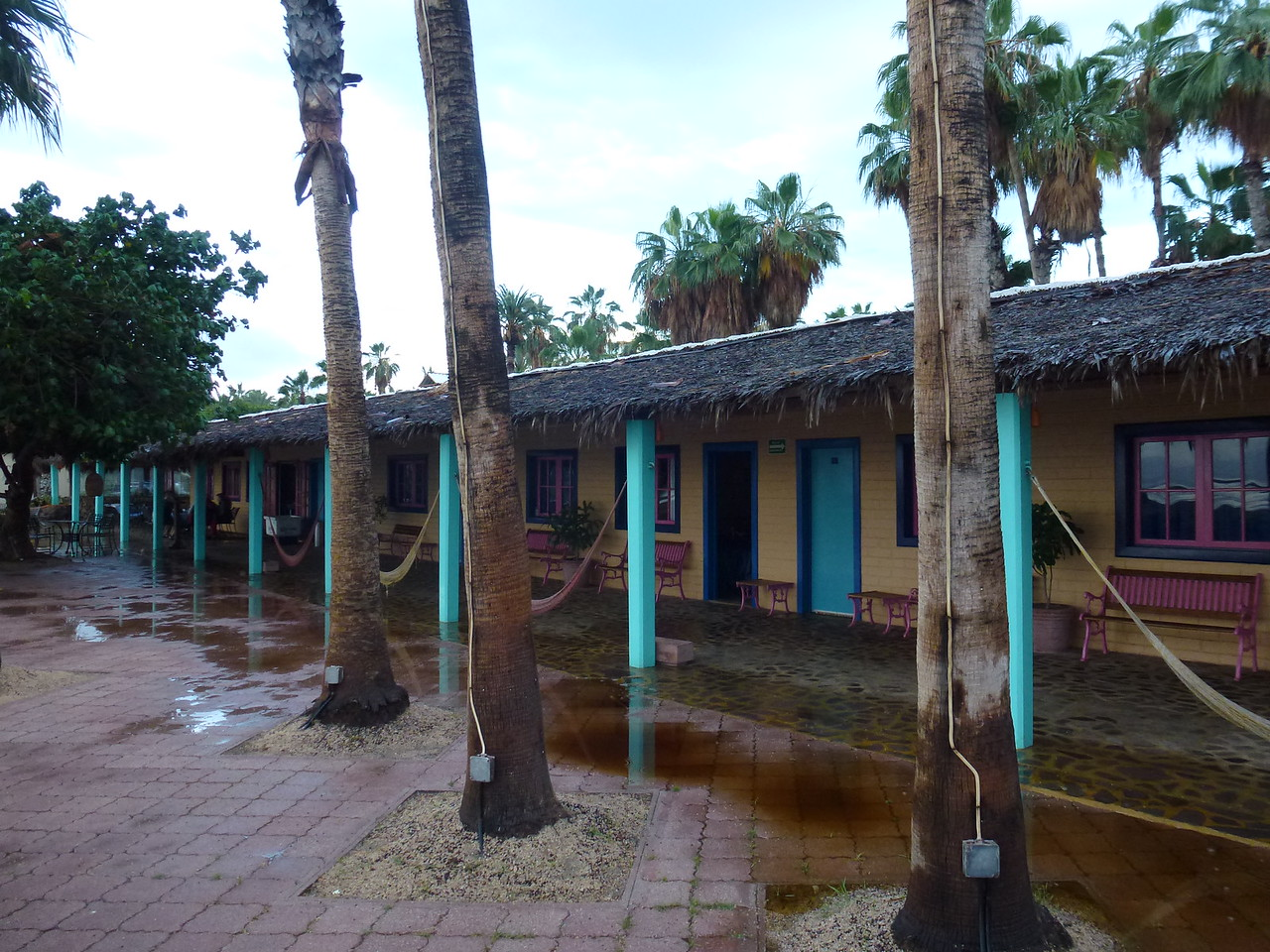 Oasis hotel after a beautiful little rain .<br /> <br /> The brown water is because of the thatched roof .