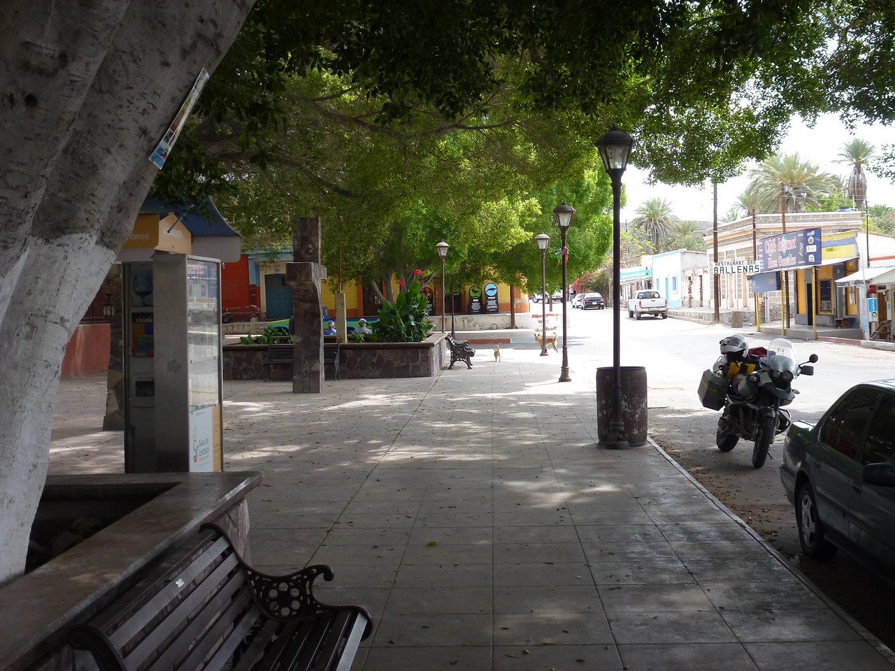 Plaza at San Ignacio