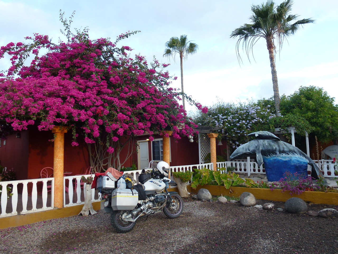 I got a room in Guerro Negro , BCS , Mexico   <br /> <br />  State line between Baja California and Baja California Sur (south) <br /> <br /> This is at Mallarrimos <br />  <br /> Very nice place to eat and stay .    $12 meal and a $38 dollar room (US)