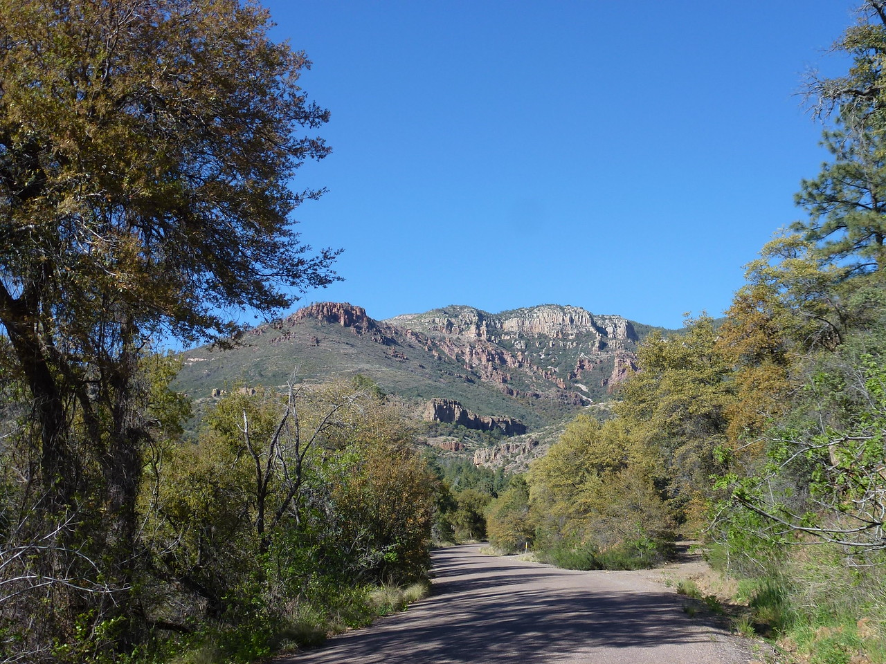 I'm headed North towards Young , Az <br /> <br /> Stayed the night at Payson