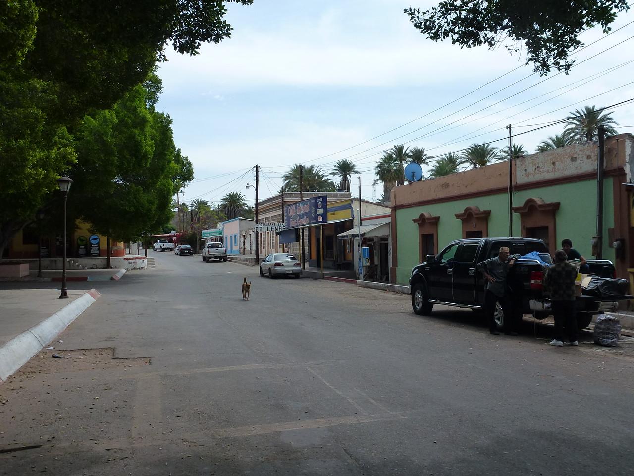 Street scene ay San Ignacio <br /> <br /> Always a dog , not too far away