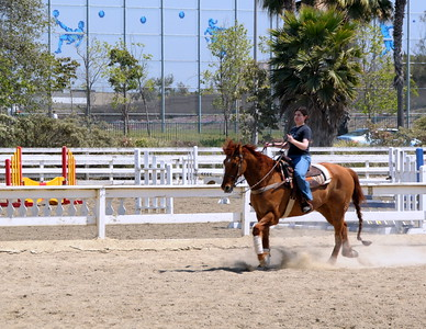 HB Equestrian park