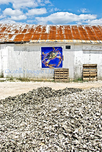 Discards / Bluffton Oyster Factory, Bluffton, South Carolina