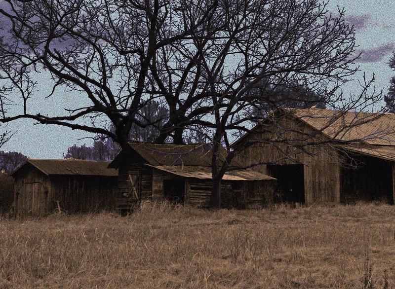 Highway 100 Barns