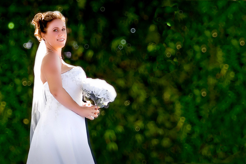 I love the way the sun just backlit the bride with the bushes out of focus in the back ground.