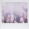 waterknees