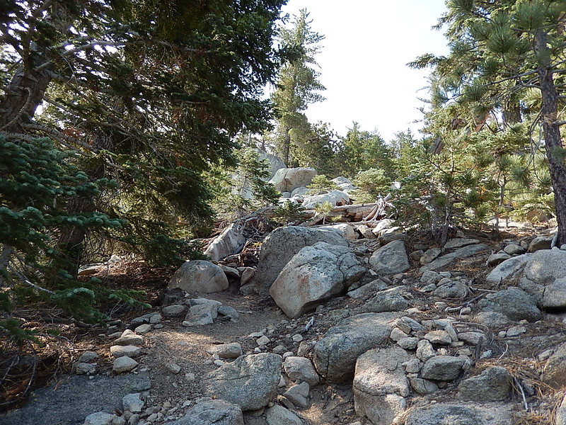 Typical terrain as we near the summit.