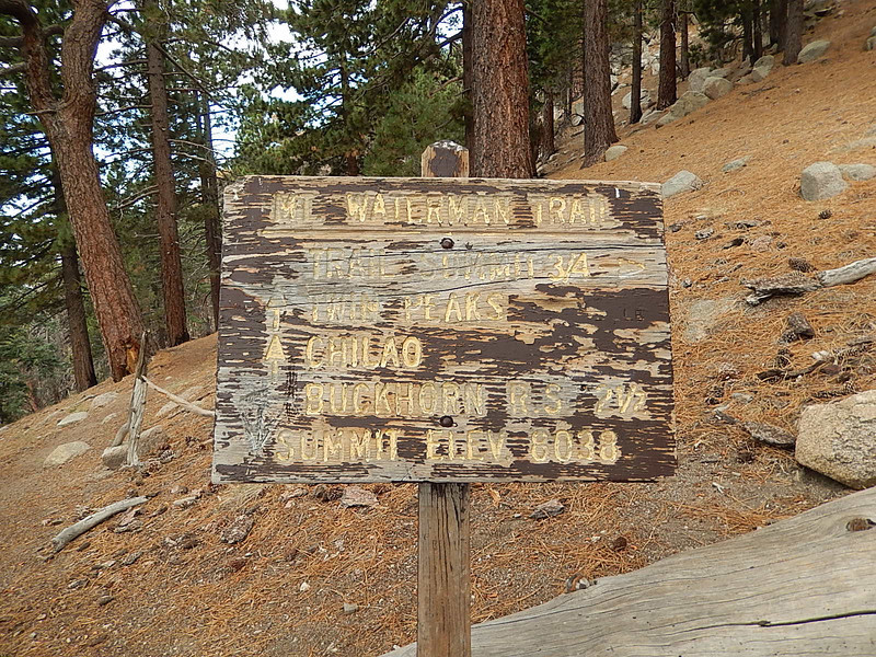 This point is the split between the Mount Waterman and Twin Peak trails.