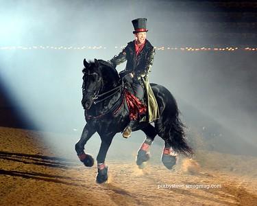 Spirit Of The Horse 2014