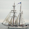 The brigantine Exy Johnson sails towards Angel's Gate and home during whale watching trip aboard the Spirit out of Ports O'Call Village in San Pedro, CA on January 26, 2013. Photo © Bernardo Alps/PHOTOCETUS/All rights reserved.
