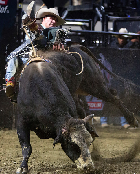 """BANGOR, Maine -- 03/11/2017 -- Nathan Burtenshaw tries to stay on Sarge during the Professional Bull Riders Velocity Tour """"Bangor Buck Off,"""" at Cross Insurance Center in Bangor Saturday. Ashley L. Conti 