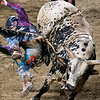 """BANGOR, Maine -- 03/11/2017 -- Nick Gonclaves is bucked from Peep Show during the Professional Bull Riders Velocity Tour """"Bangor Buck Off,"""" at Cross Insurance Center in Bangor Saturday. Ashley L. Conti 
